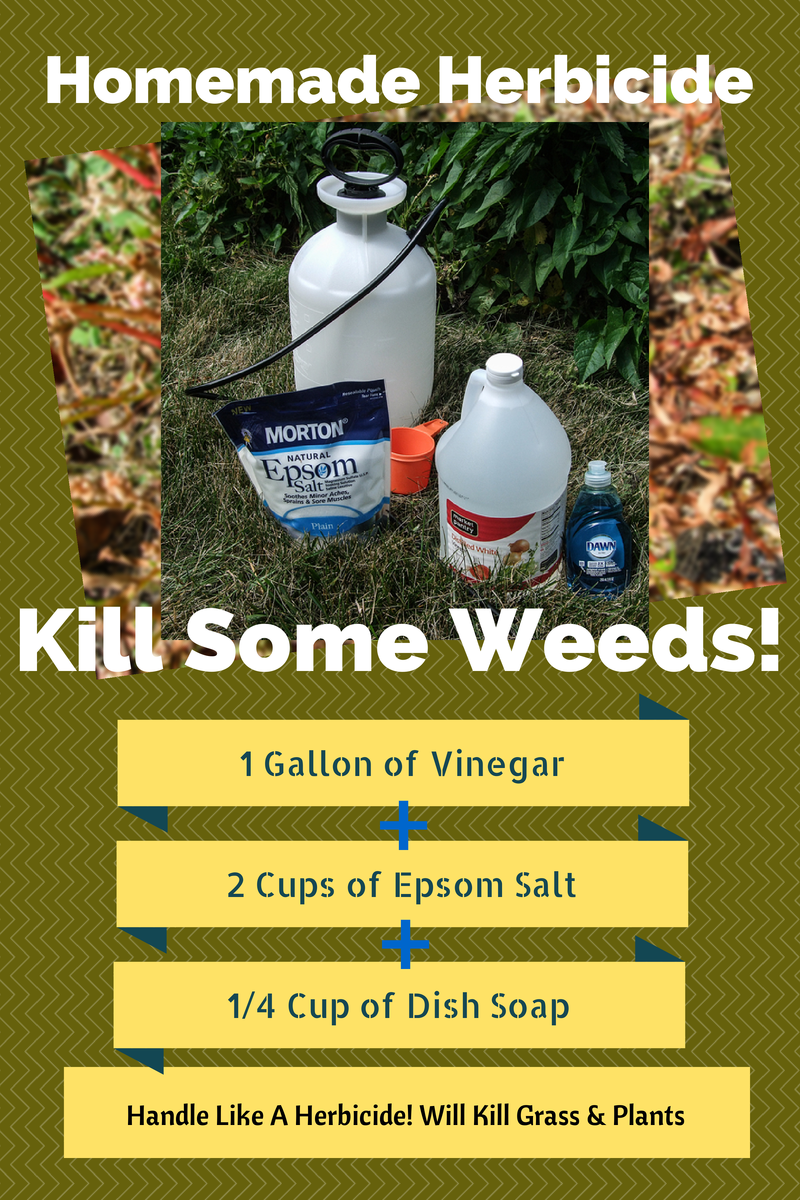 Homemade Herbicide