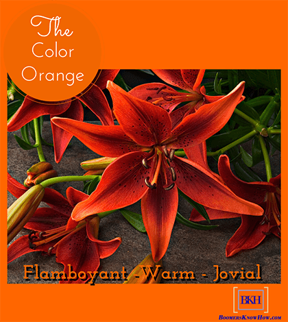 The Color Orange - color symbolism
